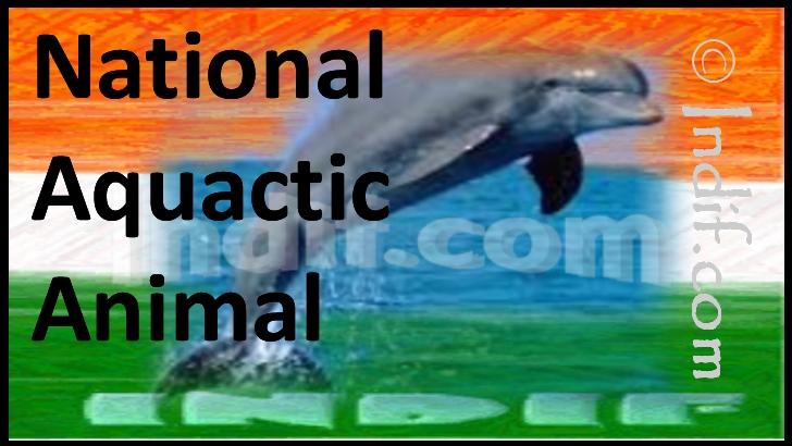 National Aquatic Animal