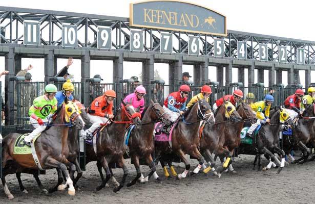 Derby (horse race)